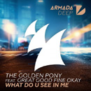 THE GOLDEN PONY - What Do U See In Me