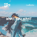 TIM GARTZ - What You Want (feat. Cammora)