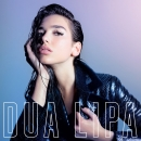 DUA LIPA - New Rules (No Tech Remix)