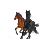 LIL NAS - Old Town Road (Remix)