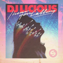 DJ LICIOUS - I Hear You Calling