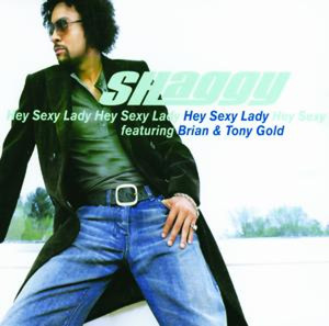 SHAGGY - Hey Sexy Lady