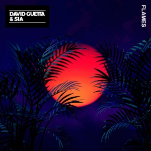 DAVID GUETTA - Flames (David Guetta Remix)