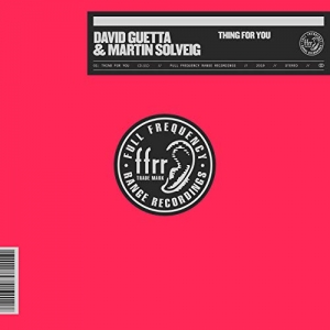 DAVID GUETTA - Thing For You