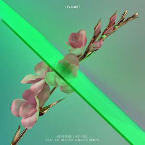 FLUME - Never Be Like You (Martin Solveig Remix)